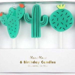 Kaktus Kerzen